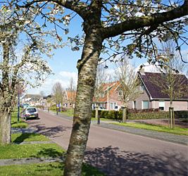 Easterwierrum-NL-homepage-03