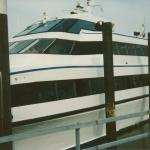 Fûgelwachtreiske 1993 - Skylge