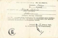 Oarlogsdokumint - Wapke Bijlsma 19450212 01