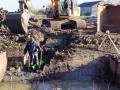 Fotoalbum Geart Siesling, 041, It klear meitsjen fan it bedriuweterrein Easterwierrum, 13-11-2013
