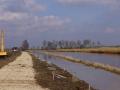 Fotoalbum Geart Siesling, 003, It nije fietspaad lâns de Zwette by Easterwierrum, 18-03-2013
