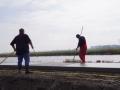 Fotoalbum Geart Siesling, 029, It nije fietspaad lâns de Zwette by Easterwierrum, 17-04-2013