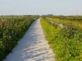 Fotoalbum Geart Siesling, 036, It nije fietspaad lâns de Zwette by Easterwierrum, 05-09-2013