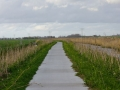 Fotoalbum Geart Siesling, 086, It nije fietspaad lâns de Zwette by Easterwierrum, 15-04-2014