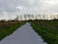 Fotoalbum Geart Siesling, 088, It nije fietspaad lâns de Zwette by Easterwierrum, 15-04-2014