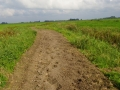 Fotoalbum Geart Siesling, 008, Wurksaamheden nije fietspaad Easterwierrum - Kleiterp, 09-09-2014 tot en met 04-10-2014