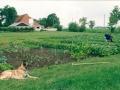 1992 14 juli Het laatste jaar van de volkstuin Easterwierrum Klaas Allardus