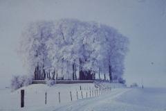 Fotoalbum Frits Hoekstra, 015, PICT0065