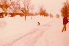Fotoalbum Afke Terra-Altenburg, 011, Winter 1979