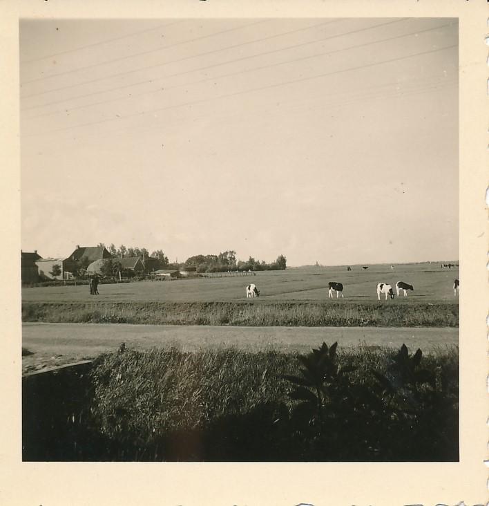 Fotoalbum Andre Kamsma, 065, Dilledyk 1955