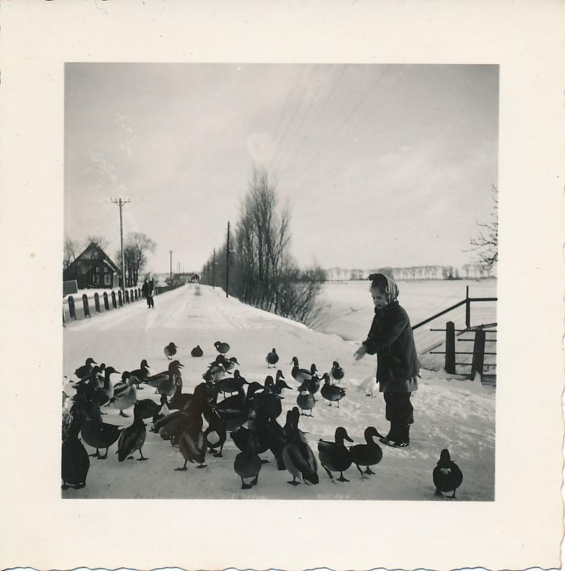 Fotoalbum Andre Kamsma, 071, Dilledyk, jier 1955-1956