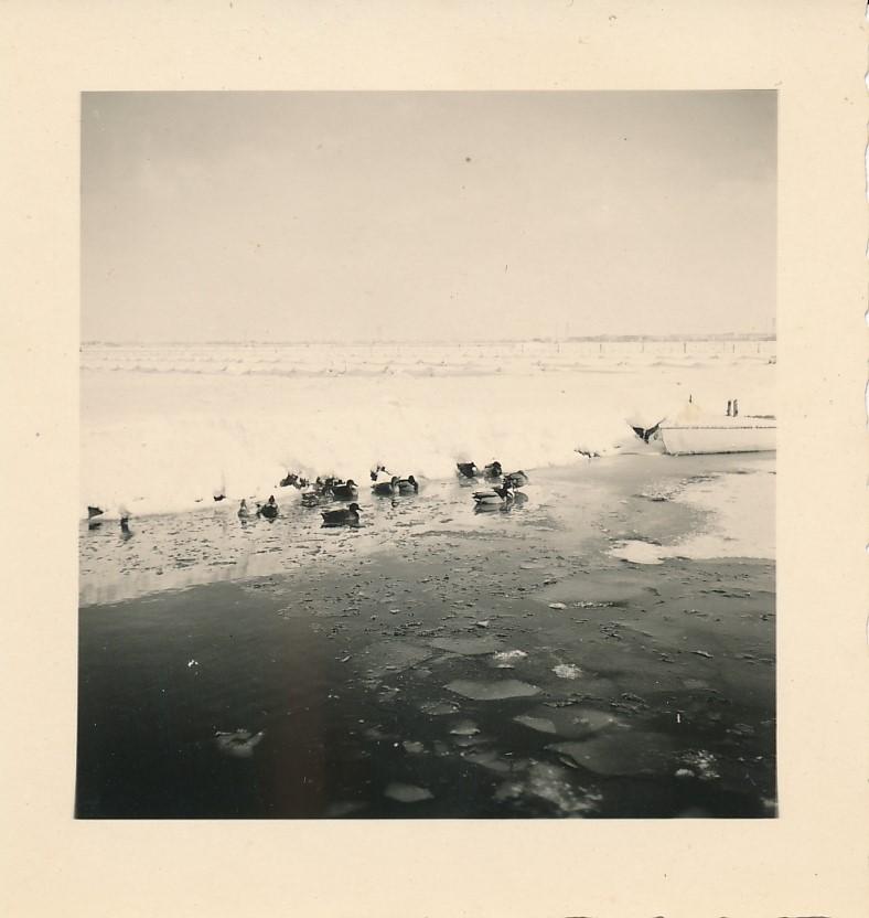Fotoalbum Andre Kamsma, 074, Winter yn Easterwierrum, De Dille, 1955-1956
