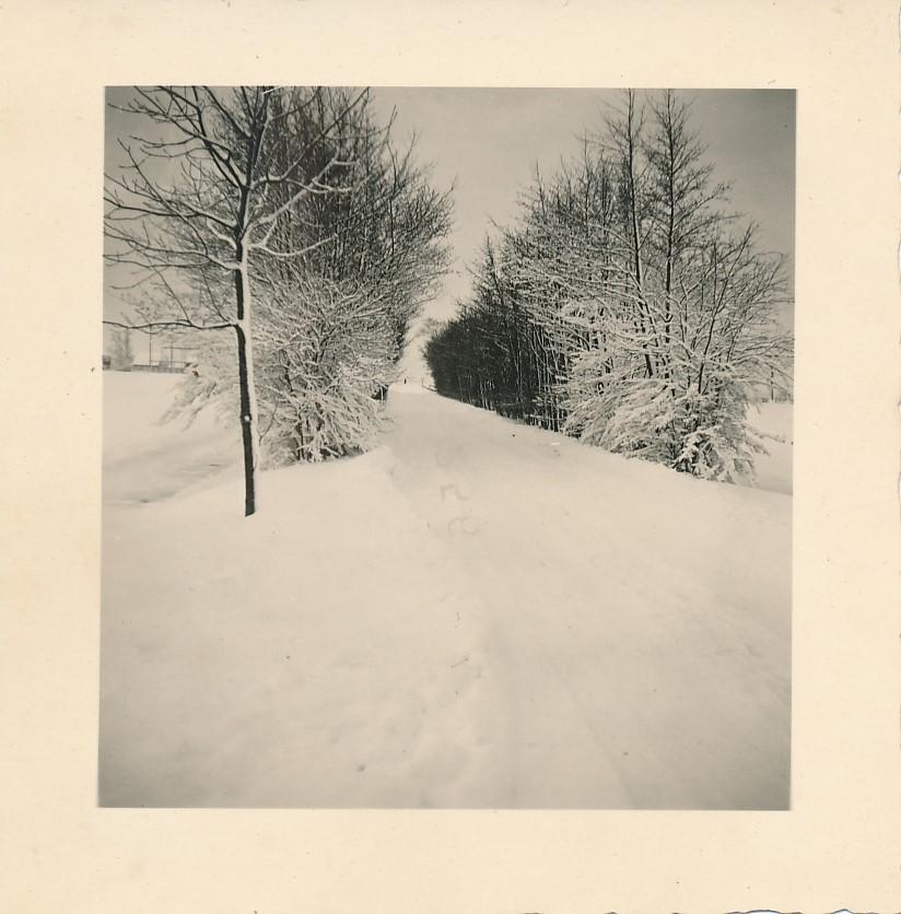 Fotoalbum Andre Kamsma, 075, Winter yn Easterwierrum, De Dille, 1955-1956