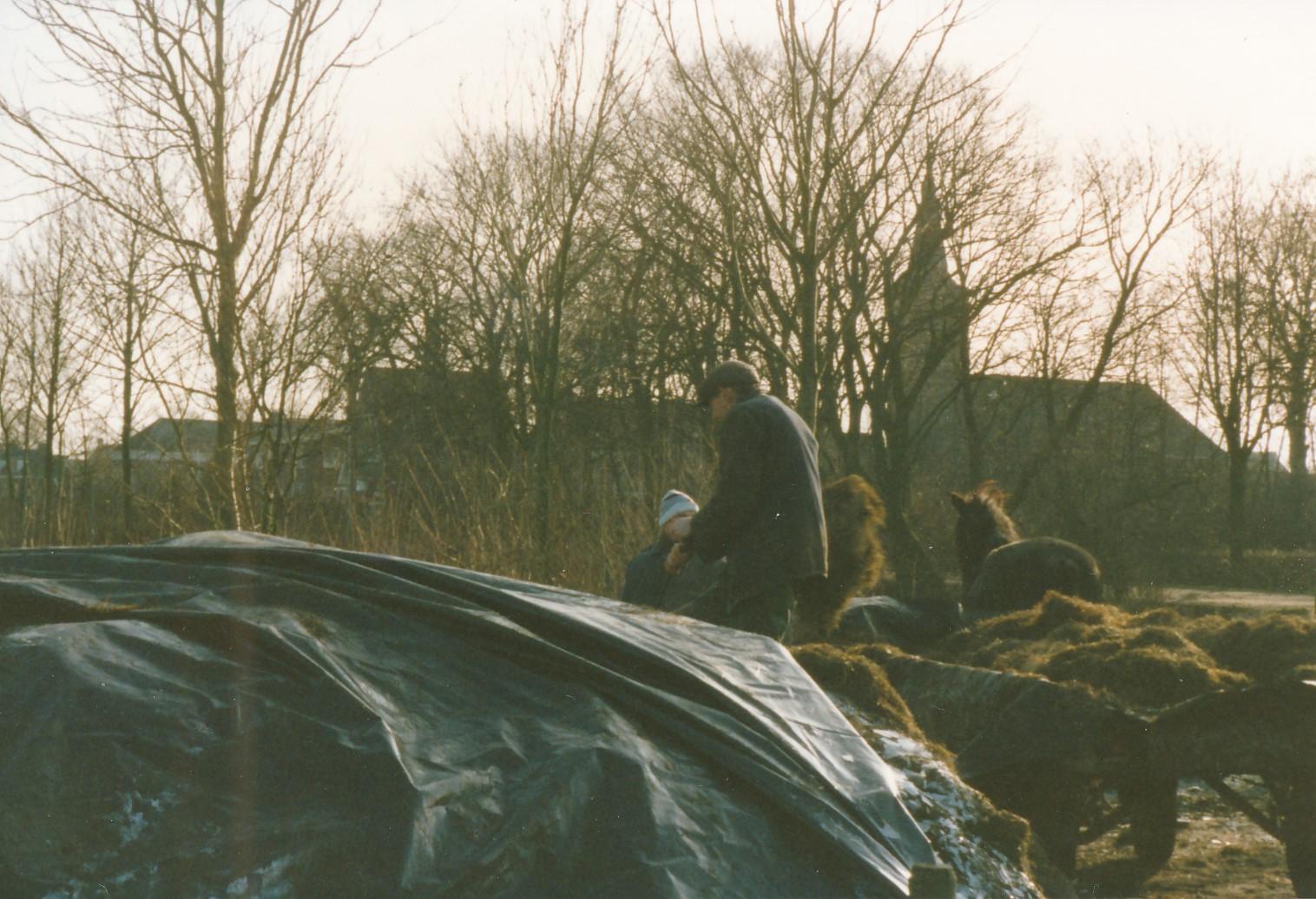 Fotoalbum Anneke Miedema, 048, Juut Hoogma, winter 1991-1992, kuil ophelje foar de kij