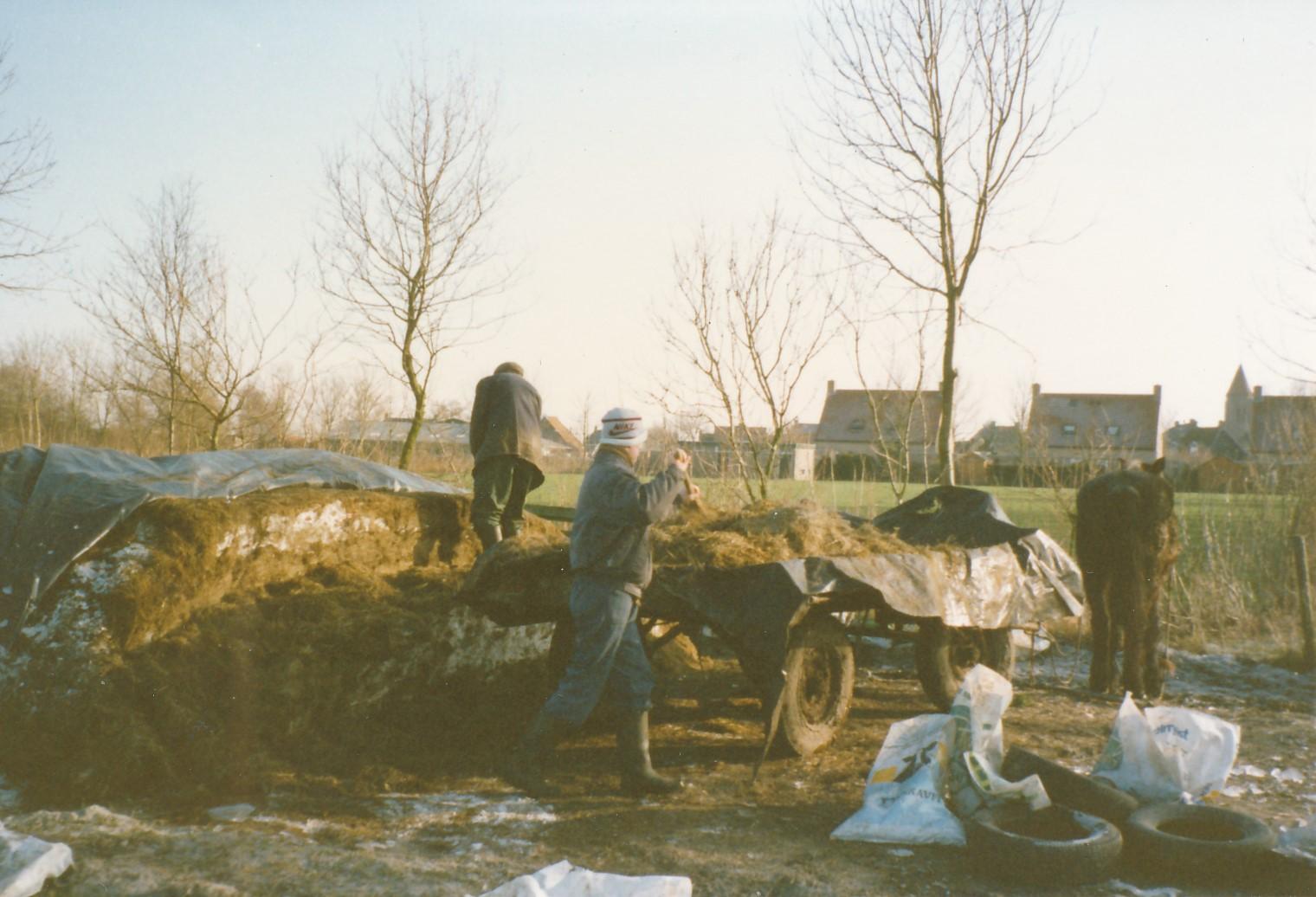 Fotoalbum Anneke Miedema, 049, Juut Hoogma, kuil ophelje foar de kij