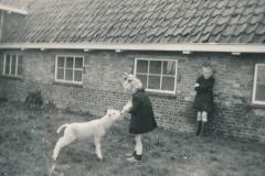 Fotoalbum-Gjetsje-Meintema-Coenraads-038-Gjetsje-en-Stien-runom-1956-a