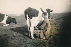 Fotoalbum-Gjetje-Wondaal-Hoekstra-003-Bonte-Meintema