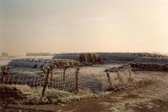 Fotoalbum Meint Miedema, Winterfoto pleats Hegedyk 1, 12, de kuilbulten, rûnom 1985