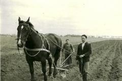 Boerewurk 1957 assuerus.jpg